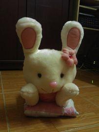Thỏ nằm