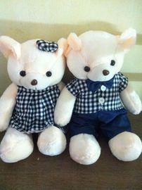 Gấu đôi