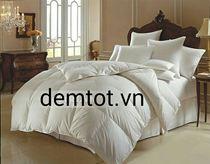 Ruột chăn bông Evepon ấm áp (1m9 x 2m1)