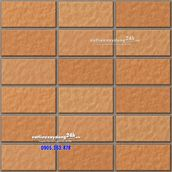 Gạch Inax 255/VIZ-10