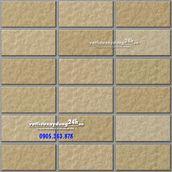 Gạch Inax 255/VIZ-5