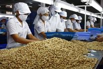 Vietnamese exporters seek niches in Middle East