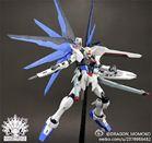 Dragon Momoko MG 1/100 Freedom Gundam