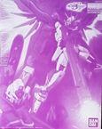 Destiny Impulse Gundam R ( Rijenesu ) Limited