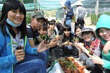 Du lịch Nông nghiệp: Làm nông trong một tâm thế mới