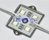 LED 5050 cụm 4 LED Đế  Sắt