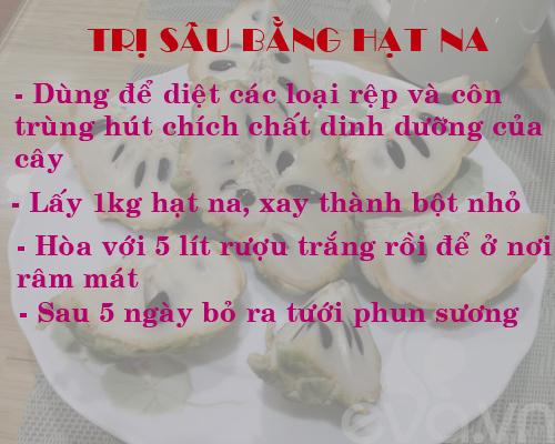 Description: kinh nghiem trong rau, cu, qua trong thung xop (phan 2) - 4