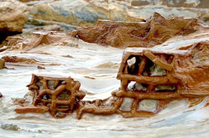 Chiêm ngưỡng vách đá sô cô la tại đảo Cô Tô