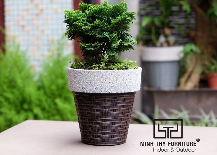 Chậu trồng cây nhựa thông minh giả mây cao cấp