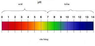 pH của nước