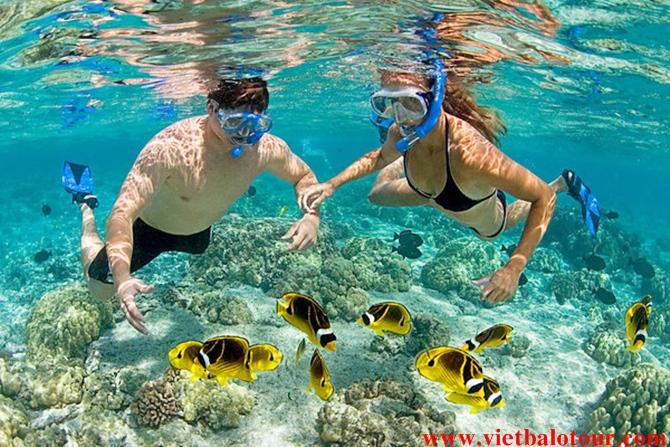 Lặn ngắm san hô, tắm biển Tại đảo Nam Du.
