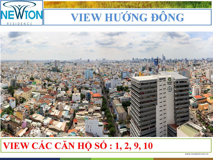 newton-view huong dong