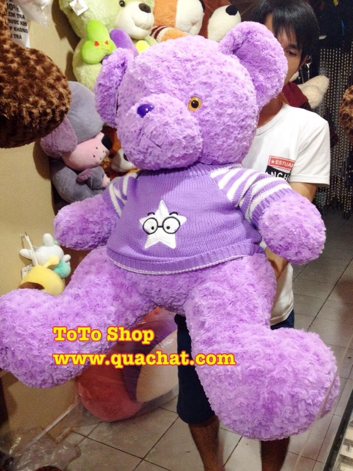 teddy thom