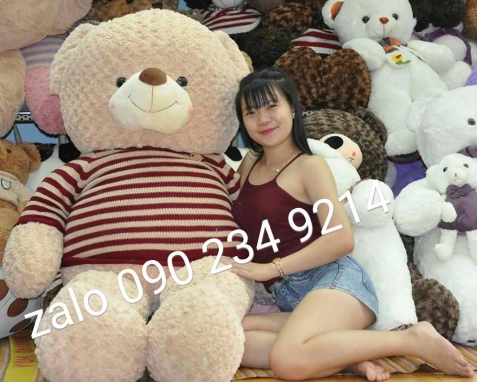 gấu bông teddy lớn