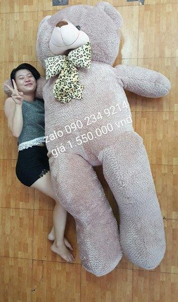 gấu bông 2m