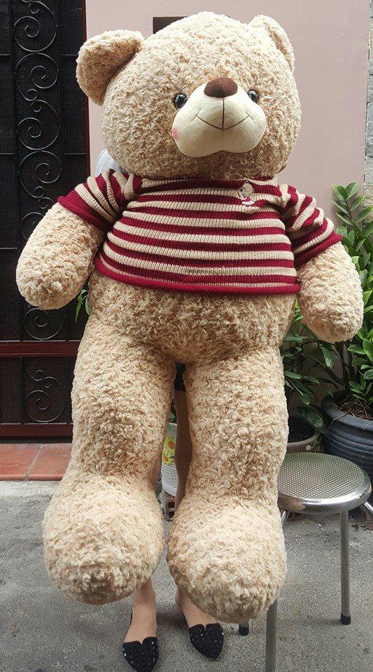 Gấu teddy cao cấp 1m6 đẹp xinh giá rẻ 01