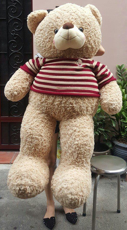 Gấu teddy cao cấp 1m6 đẹp xinh giá rẻ 02