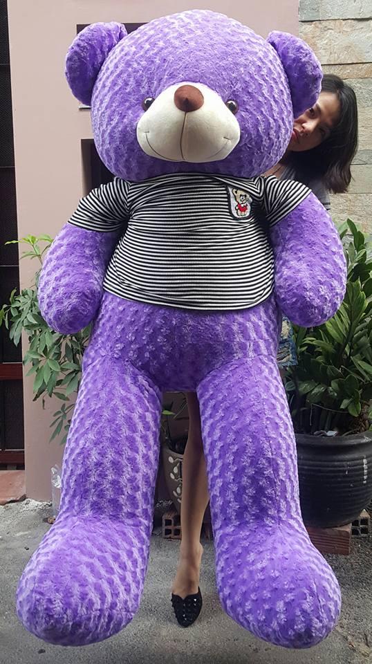 Gấu teddy to màu tím 1m8 01