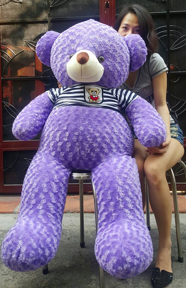 Gấu teddy màu tím 01