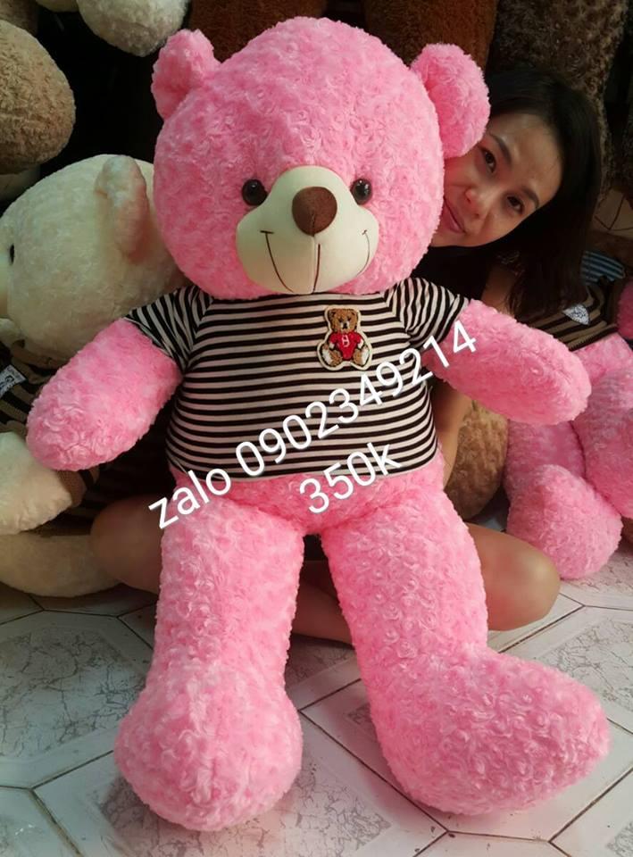 Gấu teddy hồng xinh 1m2