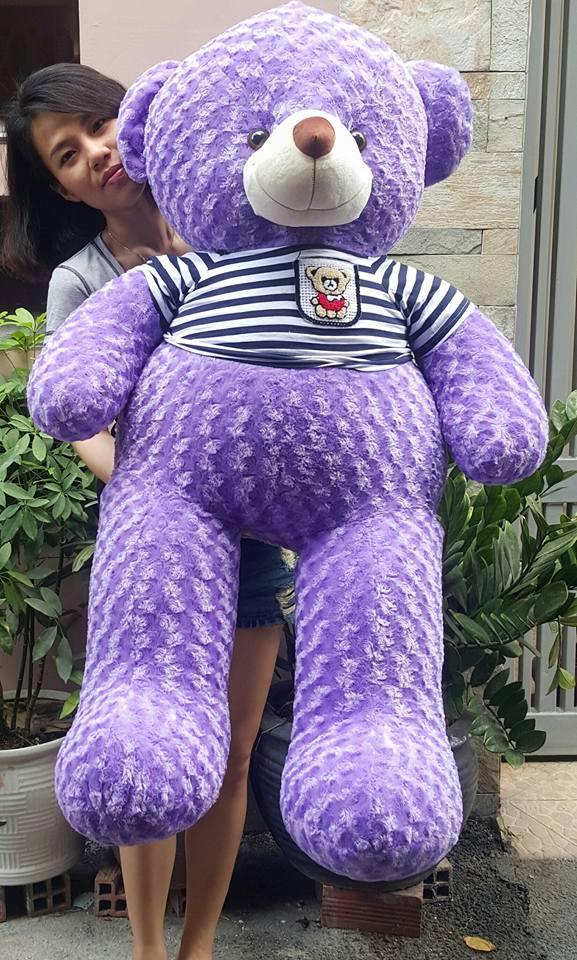 Gấu teddy màu tím 02