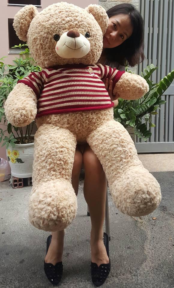 Gấu teddy ngoại 02
