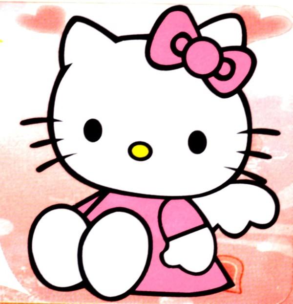 Kitty có một chú mèo cưng tên là Charmmy Kitty và chú chuột bé xinh tên Sugar. Charmmy Kitty là một chú mèo Ba Tư trắng, ngoan ngoãn và rất vâng lời. Kitty vô cùng yêu quý món quà này từ cha của cô nên luôn chăm chút cho Charmmy Kitty và đeo trên cổ chú chiếc chìa khóa hộp đồ trang sức của mình. Chú chuột Sugar bé xinh luôn được Kitty cưng chiều là món quà của người bạn thân thiết nhất thuở ấu thơ của Kitty - Daniel.