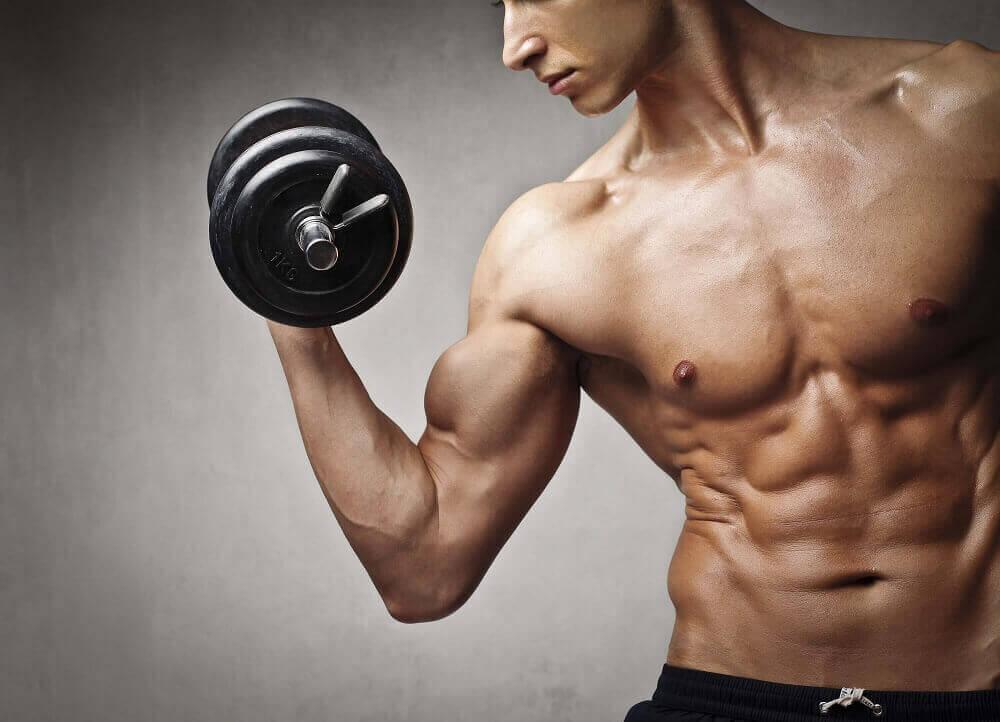 Tập tạ tăng cơ bắp mỗi ngày