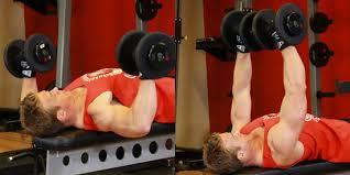 Tập cơ bắp với ghế tập tạ đa năng