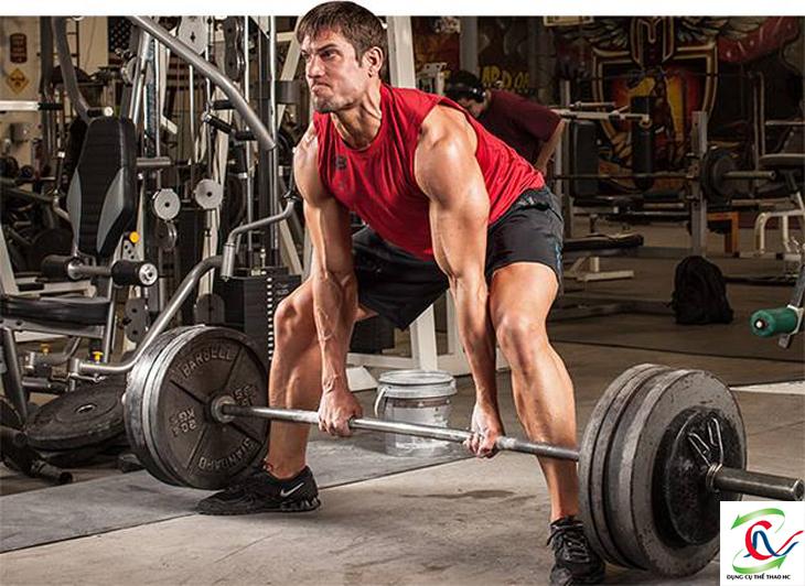 Tập tạ đúng cách rèn luyện cơ bắp hiệu quả