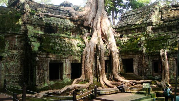 Ta Prohm - Du lịch Campuchia 4 ngày 3 đêm
