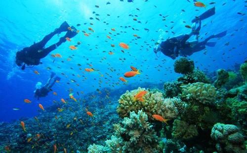 Quần đảo An Thới - ĐỊa điểm du lịch Phú Quốc