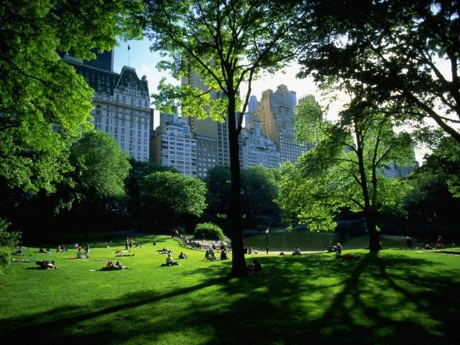 công viên trung tâm, Mỹ