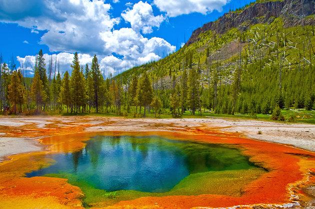 yellowstone - kinh ngiệm du lịch Mỹ