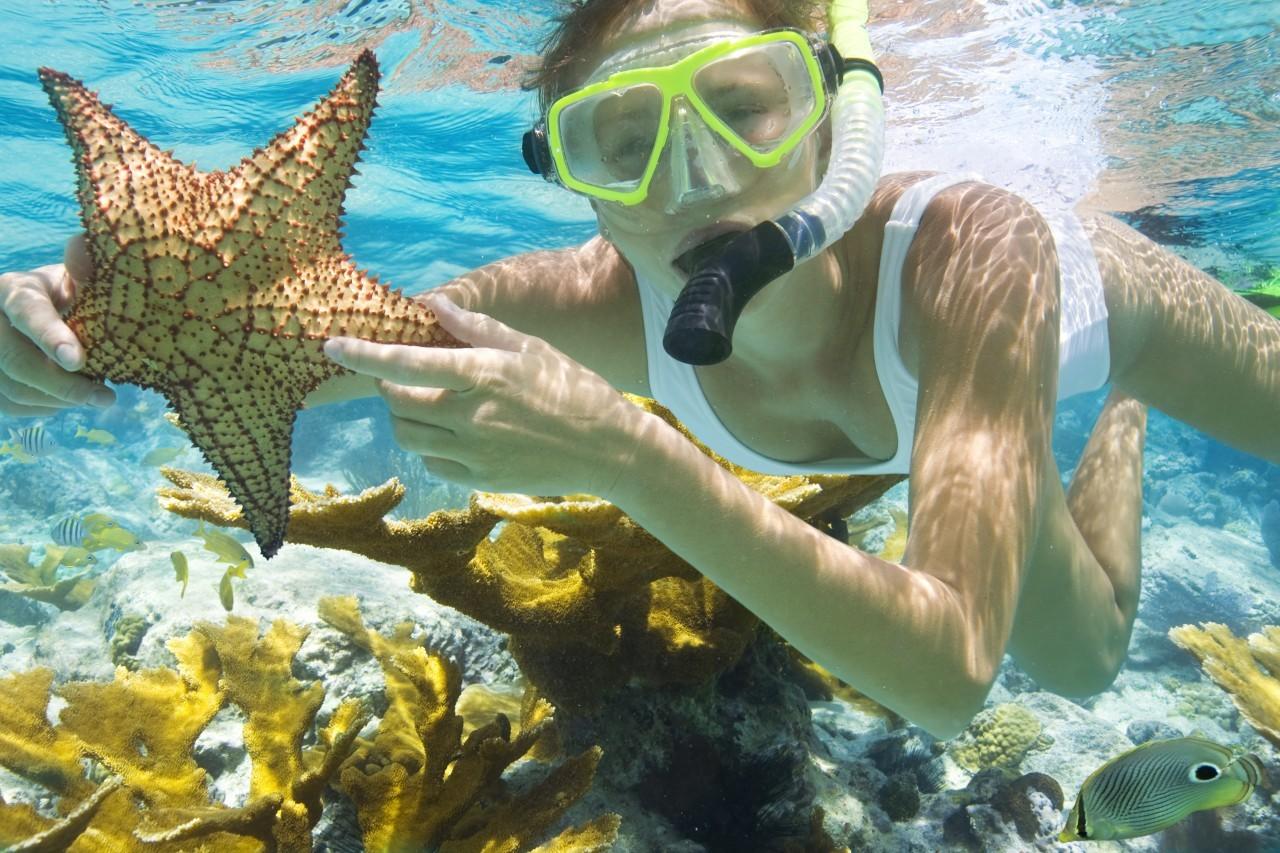 Lặn ngắm san hô - du lịch Phú Quốc