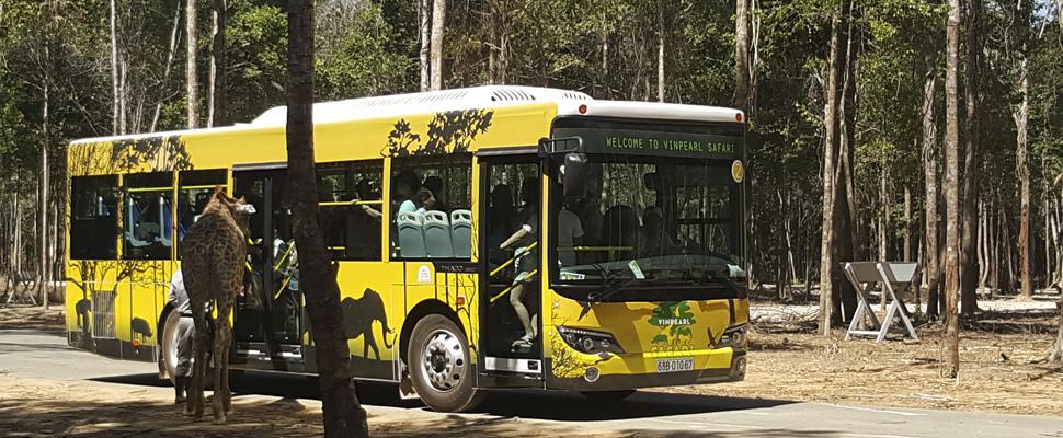 Vinpearl Safari - Du lịch Phú Quốc