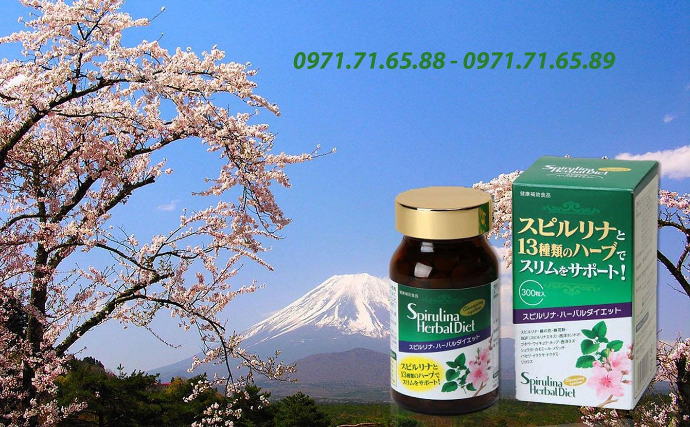 Tảo Spirulina Herbal Diet giảm cân Nhật Bản giá rẻ