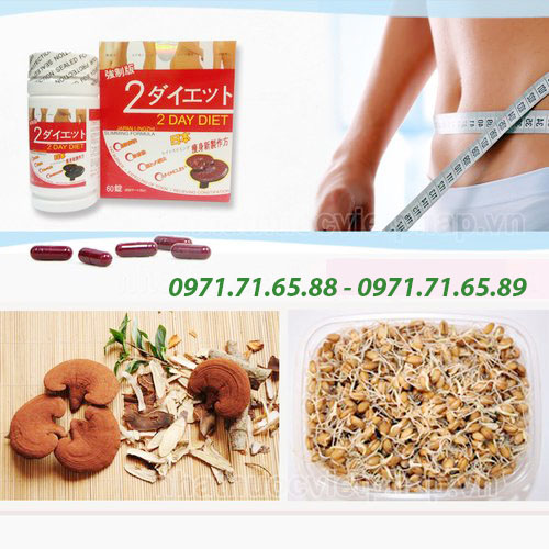 Thuốc giảm cân 2 day diet nấm linh chi, 2 day diet