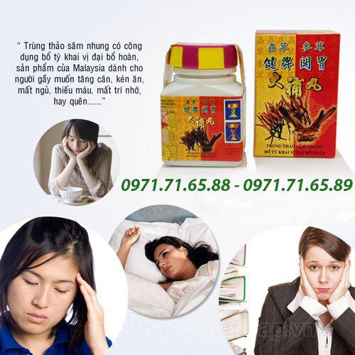 Thuốc tăng cân trùng thảo sâm nhung cao cấp