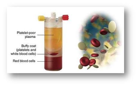 trẻ hóa da bằng liệu pháp prp