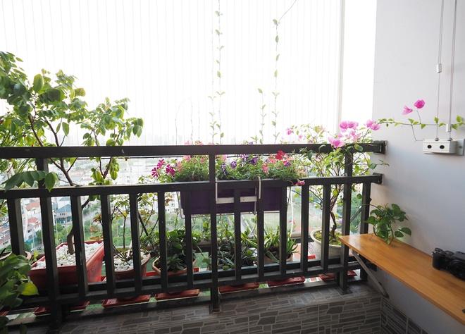 Vườn hoa tưới nước tự động