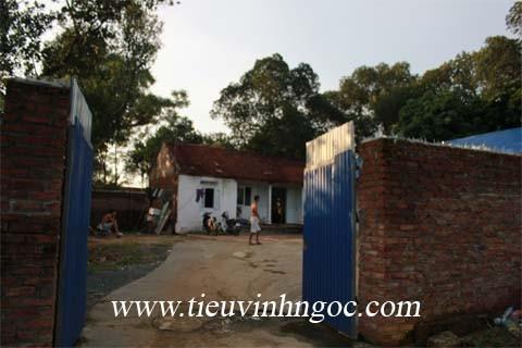 Cơ sở cai nghiện ma túy tự nguyện Tiêu Vĩnh Ngọc– Hà Nội Chi nhánh Quốc Oai