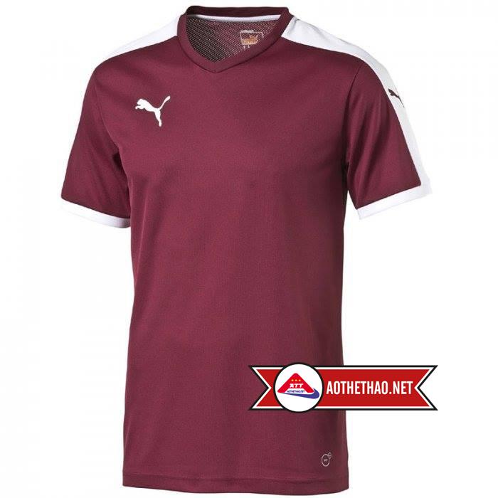Áo Bóng Đá Không Logo Sporty 325