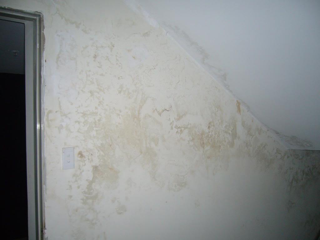 chống thấm dột