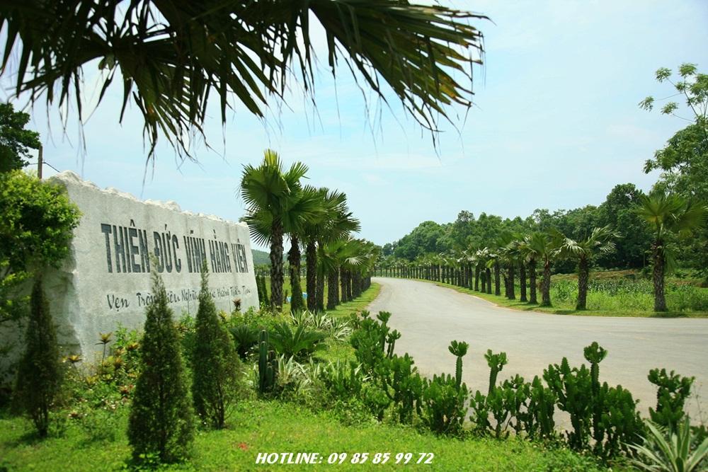cổng vào nghĩa trang thiên đức