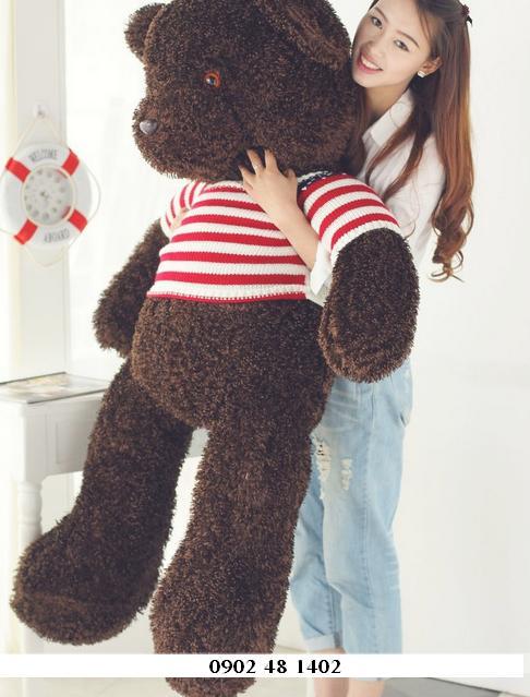 Teddy cờ lông đen 02