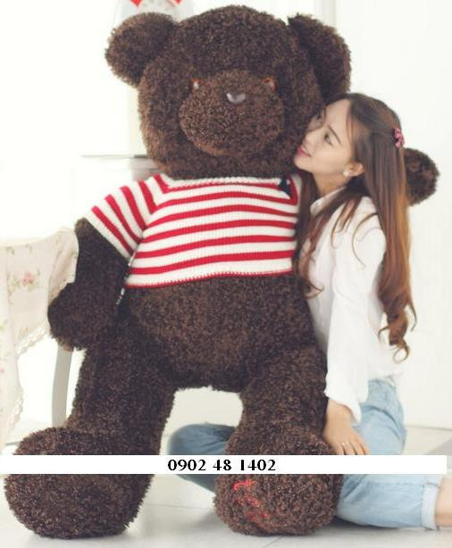 Teddy cờ lông đen