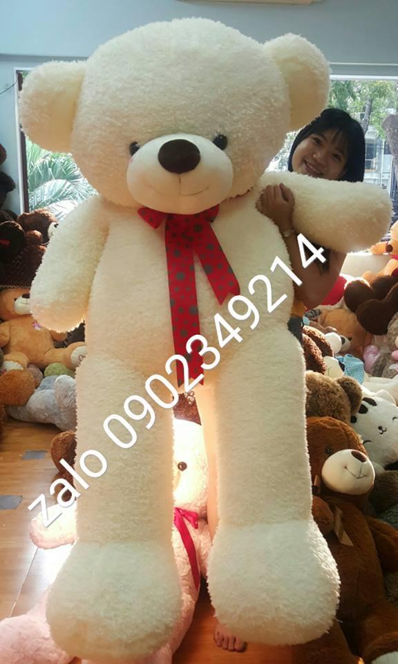 Gấu teddy Hàn Quốc noel