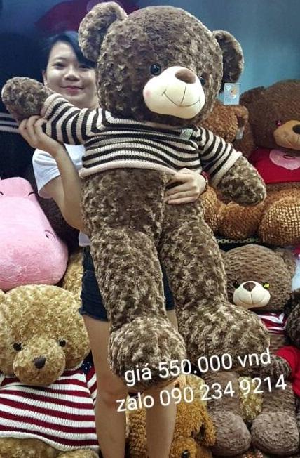 Gấu teddy Choco ngoại nhập cao cấp 01