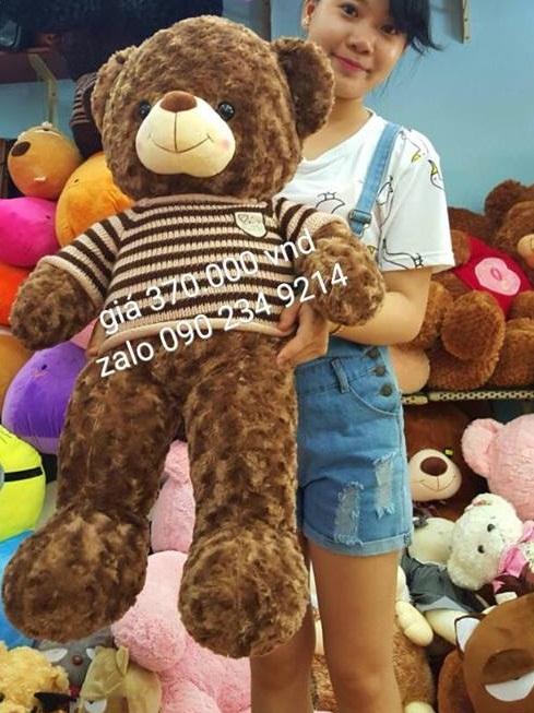 Gấu teddy Choco ngoại nhập cao cấp